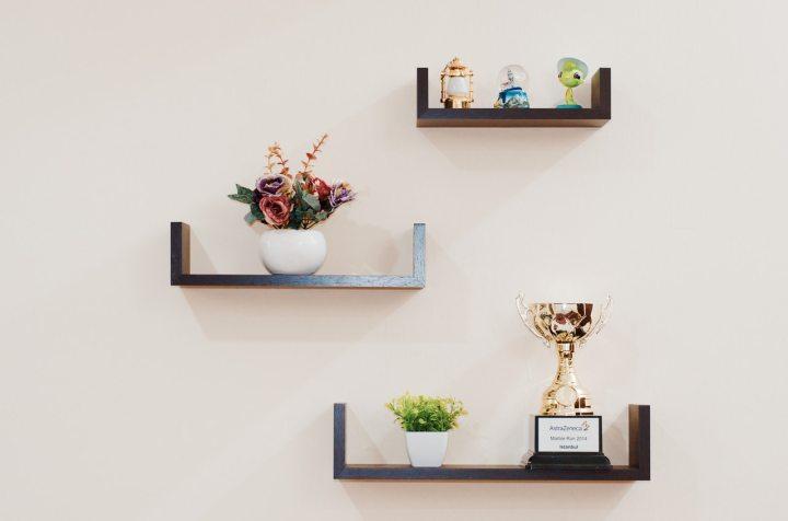 plant-prize-shelves-74942