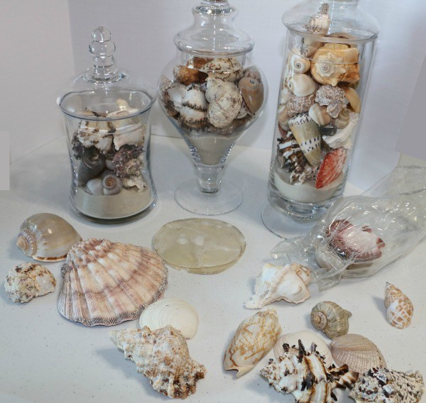 easy-apothecary-jars-with-seashells-craft-leftovers.jpg